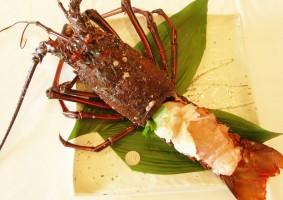 野母崎の伊勢海老料理の紹介